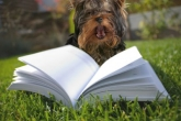 Pet & Garden Books