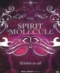 DVD - The Spirit Molecule: Within us all