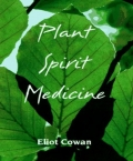Plant Spirit Medicine: The Healing Power of Plants