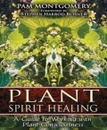 Plant Spirit Healing: A Guide to Working With Plant Consciousnes