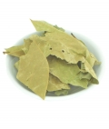 Garlic Vine wild crafted dried leaves 10g