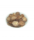 Areca catechu seed slices 40g